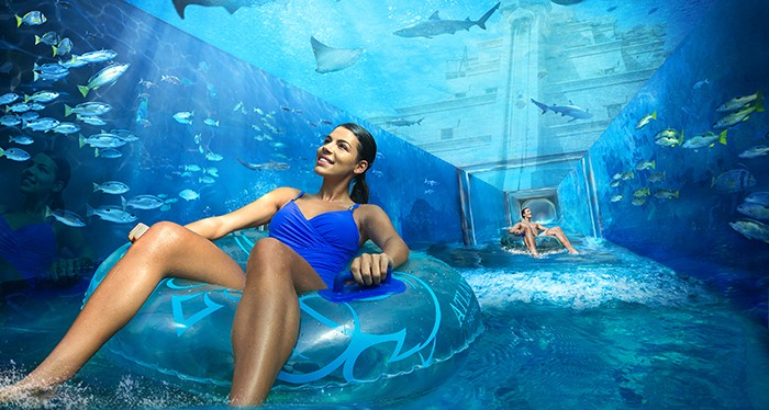 Swim along at the Atlantis Aquaventure
