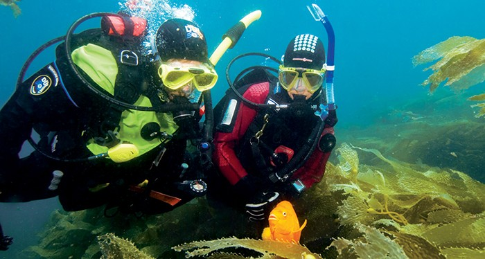 Explore the deep waters of Dubai with the scuba diving experience, water sports in dubai