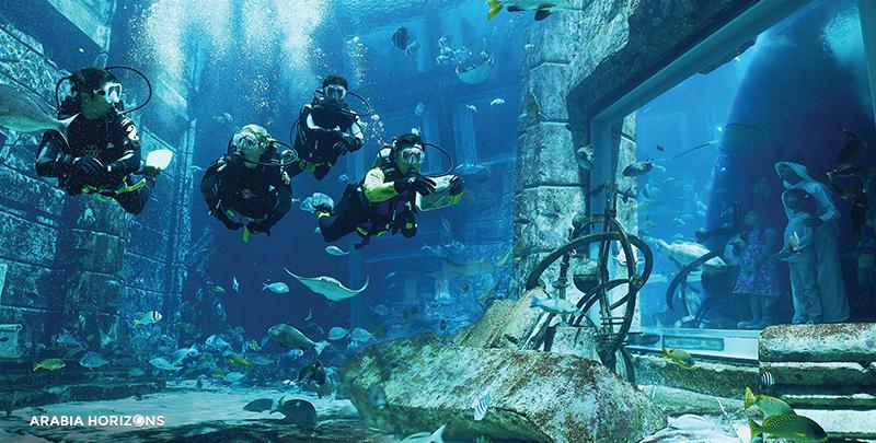 Atlantis Marine Animal Adventures, atlantic marine, animal adventure, atlantic dubai