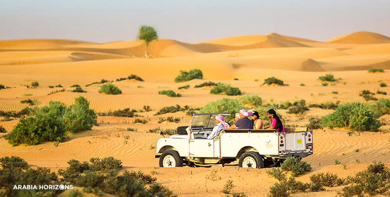 Heritage Falconry with Wildlife Drive, Heritage Falconry, Wildlife Drive in Dubai, Dubai Desert, Falcon Dubai, Dubai safari cars