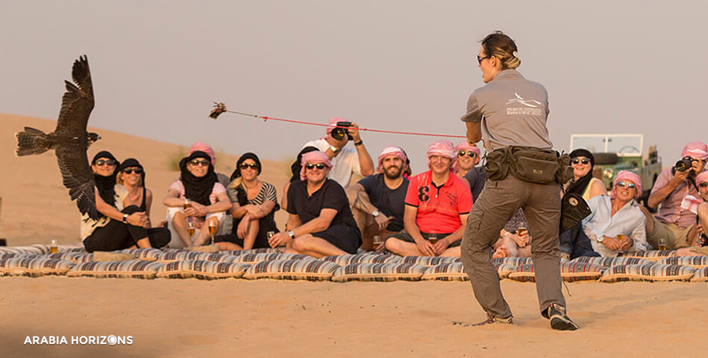 Heritage Falconry with Wildlife Drive, Heritage Falconry, Wildlife Drive in Dubai, Dubai Desert, Falcon Dubai