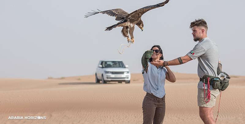 Private Interactive Falconry with Breakfast in Al Maha, Al Maha Desert, Desert Dubai