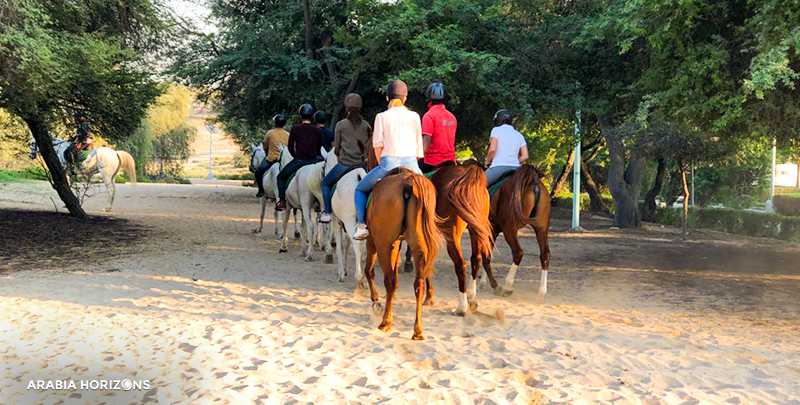 Horse Riding, horse riding dubai, horseback riding dubai, horse riding